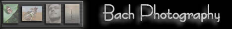 Bach Photography - Alles rund ums Foto